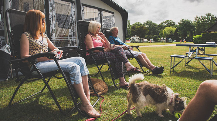 Family Camping in the New Forest